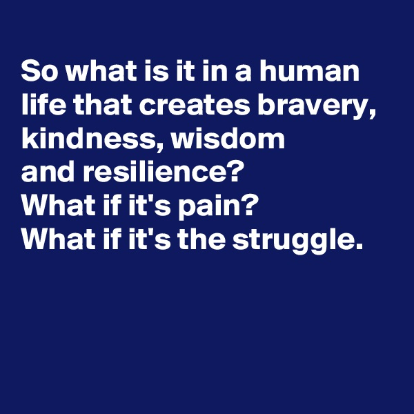 So what is it in a human life that creates bravery,  kindness, wisdom  and resilience? What if it's pain? What if it's the struggle.