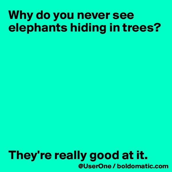 Why do you never see elephants hiding in trees?          They're really good at it.