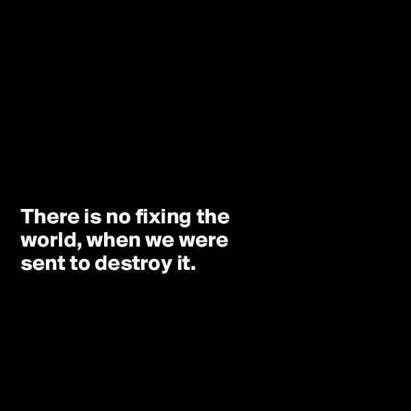 There is no fixing the  world, when we were  sent to destroy it.