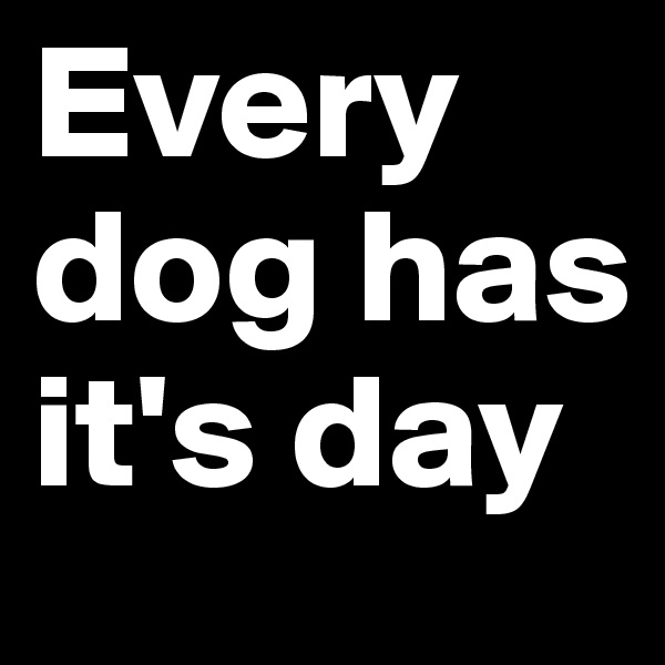 Every dog has it's day