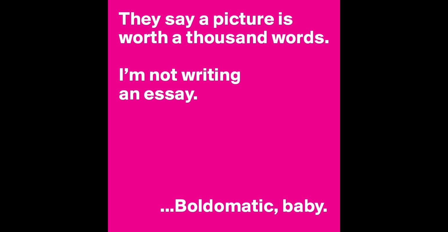 they say a picture is worth a thousand words i m not writing an they say a picture is worth a thousand words i m not writing an essay baby post by pushingvision on boldomatic