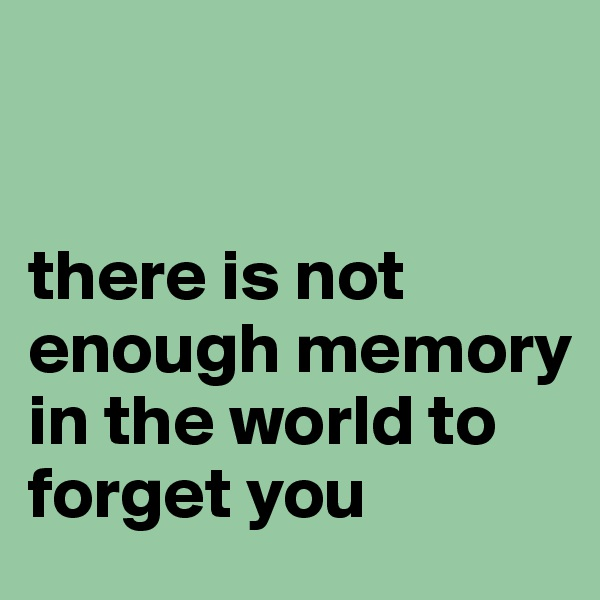 there is not enough memory in the world to forget you