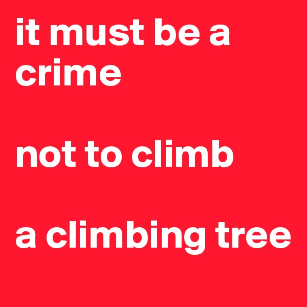 it must be a crime  not to climb  a climbing tree