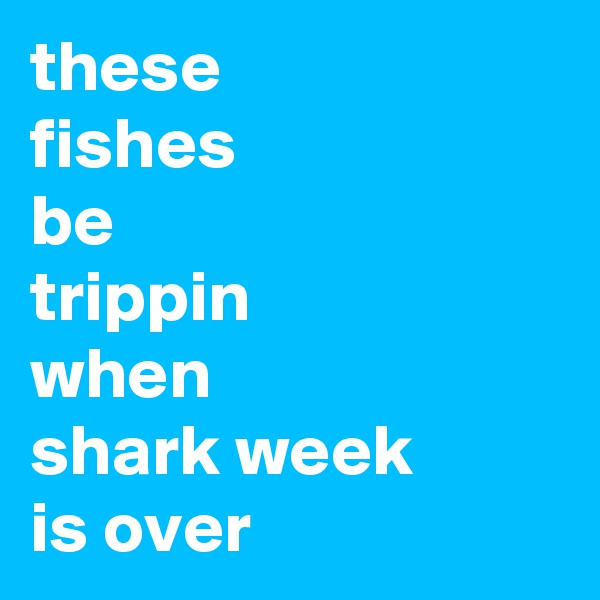 these fishes be trippin when shark week is over