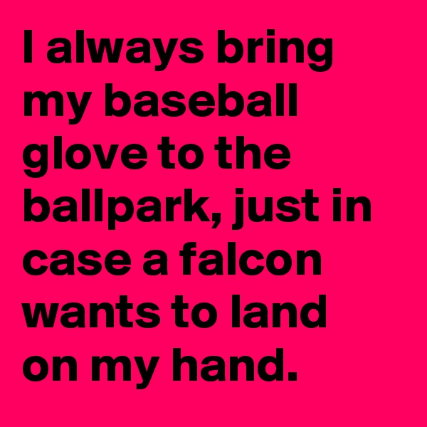 I always bring my baseball glove to the ballpark, just in case a falcon wants to land on my hand.