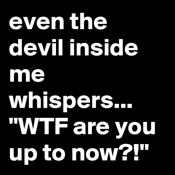 "even the devil inside me whispers... ""WTF are you up to now?!"""