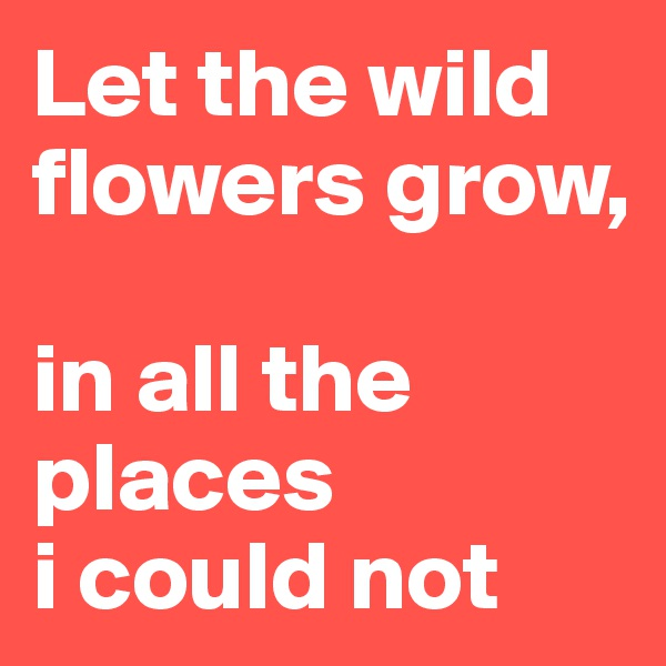 Let the wild flowers grow,   in all the places  i could not
