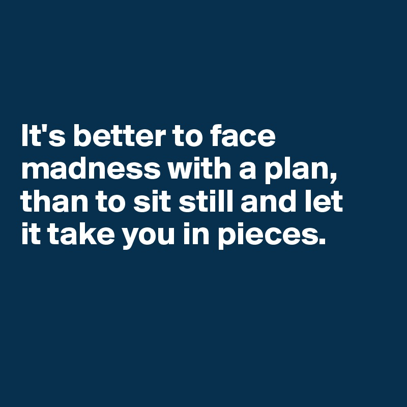 It's better to face madness with a plan,  than to sit still and let  it take you in pieces.