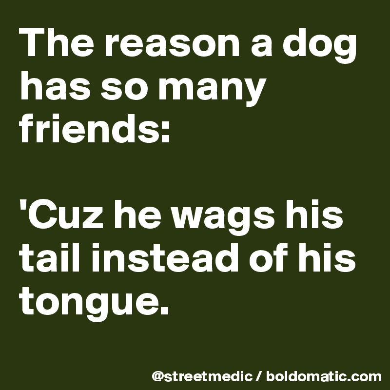 The reason a dog has so many friends:  'Cuz he wags his tail instead of his tongue.