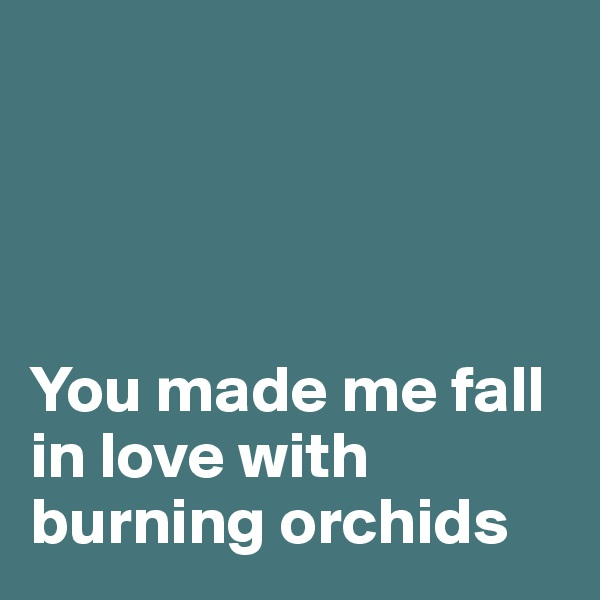 You made me fall in love with burning orchids