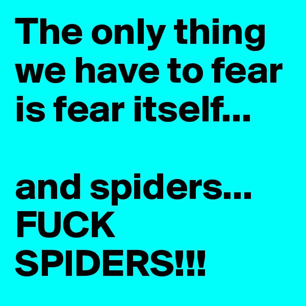 The only thing we have to fear is fear itself...  and spiders... FUCK SPIDERS!!!