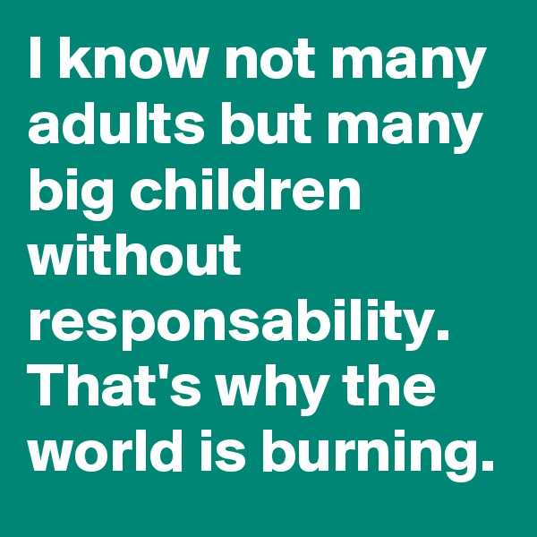 I know not many adults but many big children without responsability. That's why the world is burning.