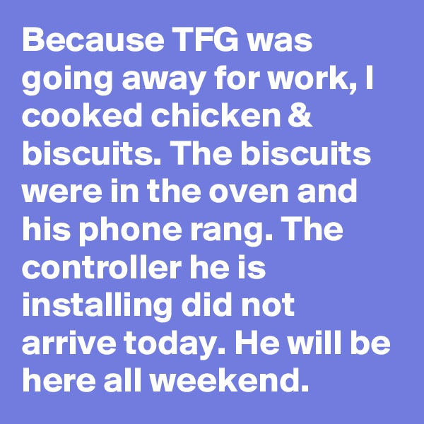 Because TFG was going away for work, I cooked chicken & biscuits. The biscuits were in the oven and his phone rang. The controller he is installing did not arrive today. He will be here all weekend.