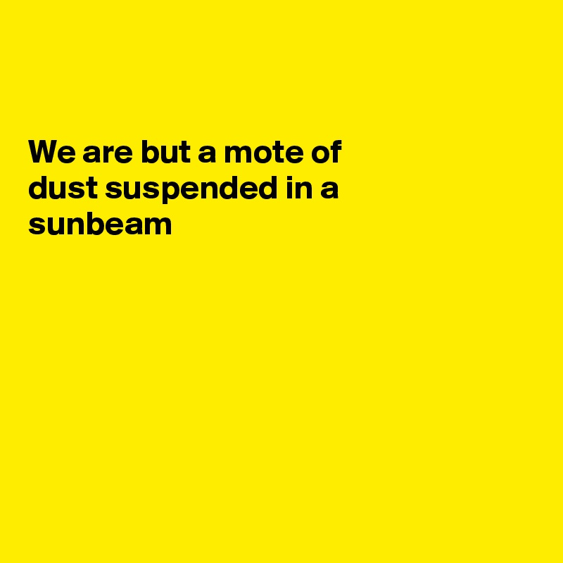 We are but a mote of dust suspended in a  sunbeam