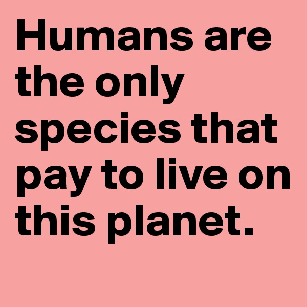 Humans are the only species that pay to live on this planet.