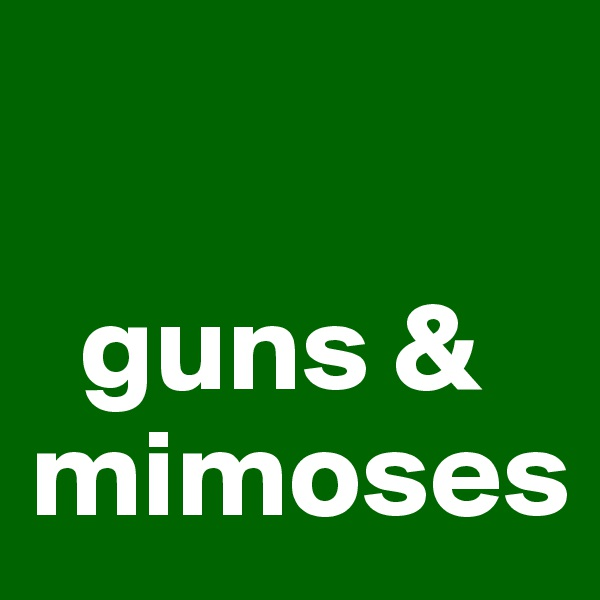 guns & mimoses