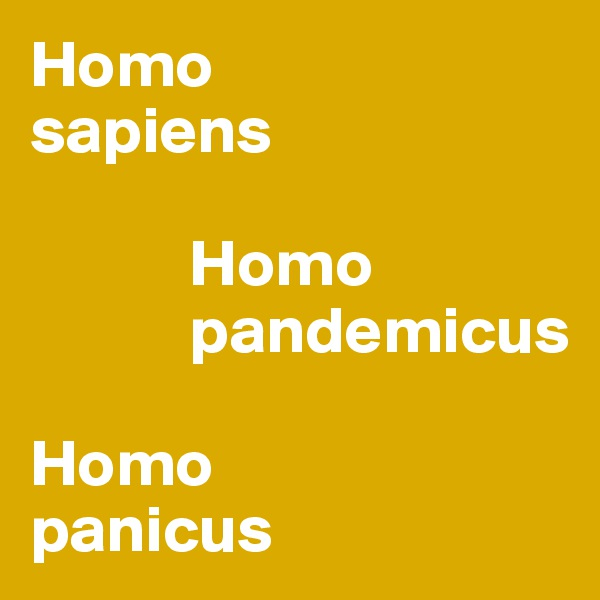 Homo  sapiens              Homo              pandemicus  Homo  panicus