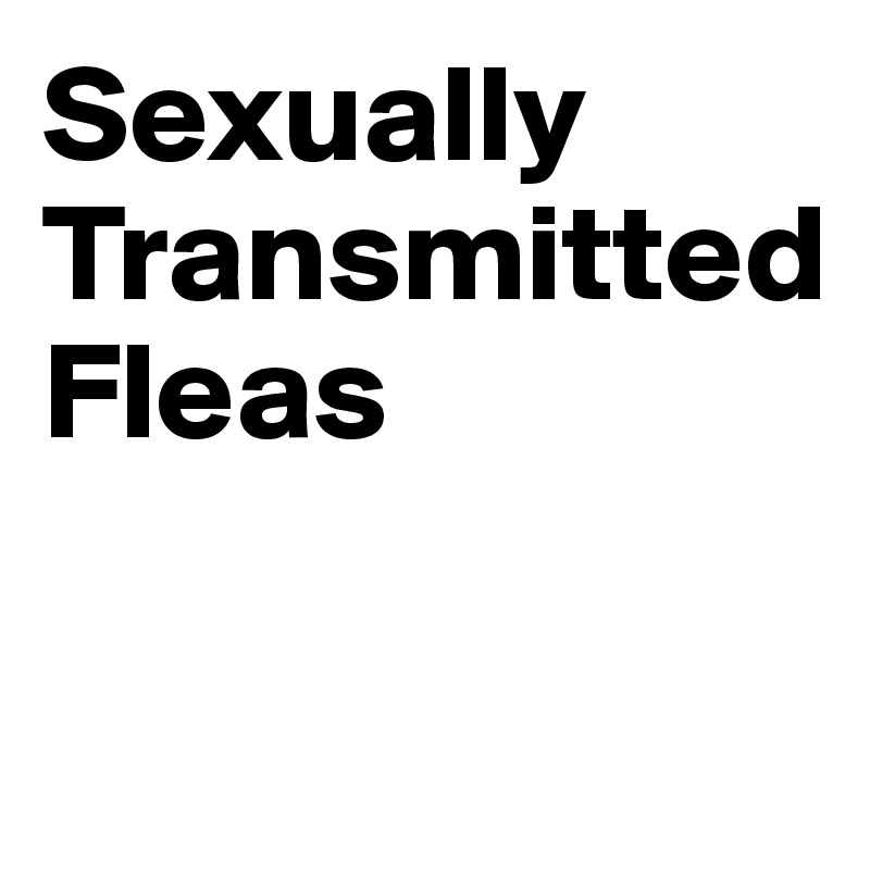 Sexually Transmitted Fleas