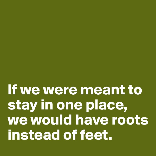 If we were meant to stay in one place, we would have roots instead of feet.