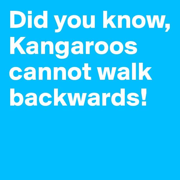 Did you know, Kangaroos cannot walk backwards!