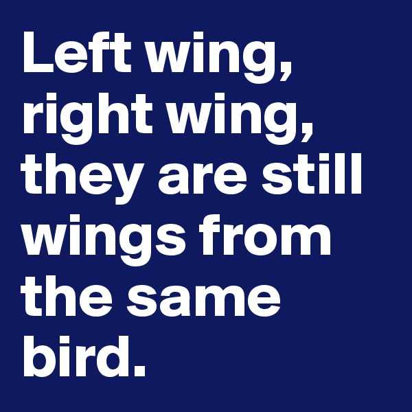 Left wing, right wing, they are still wings from the same bird.