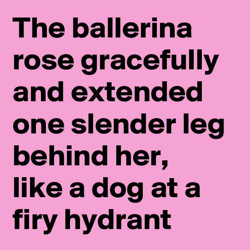 The ballerina rose gracefully and extended one slender leg behind her, like a dog at a firy hydrant