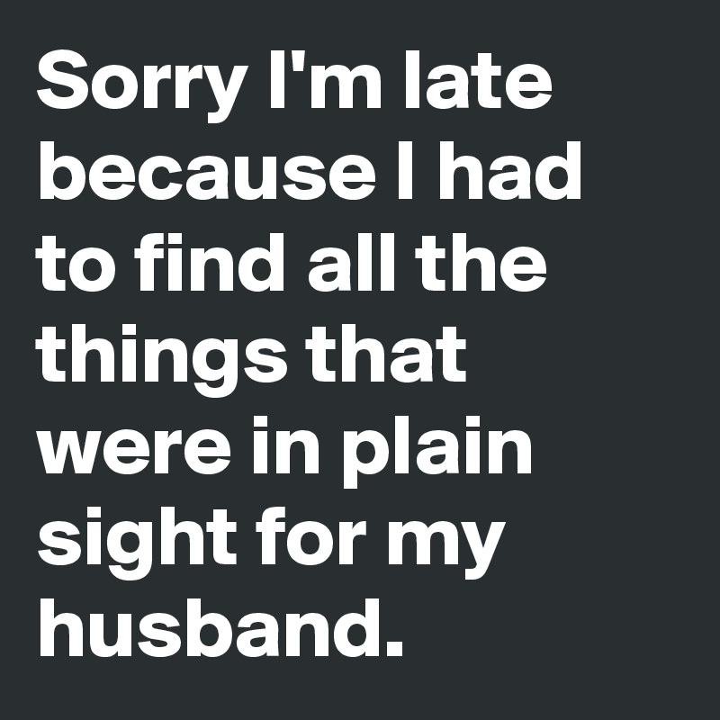 Sorry I'm late  because I had  to find all the  things that  were in plain  sight for my  husband.