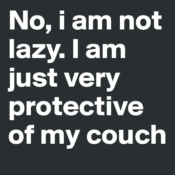 No, i am not lazy. I am just very protective of my couch