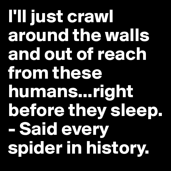 I'll just crawl around the walls and out of reach from these humans...right before they sleep. - Said every spider in history.