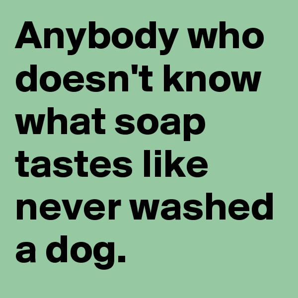 Anybody who doesn't know what soap tastes like never washed a dog.
