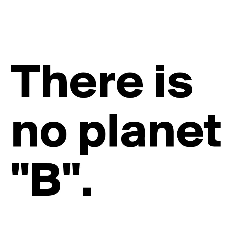 "There is no planet ""B""."