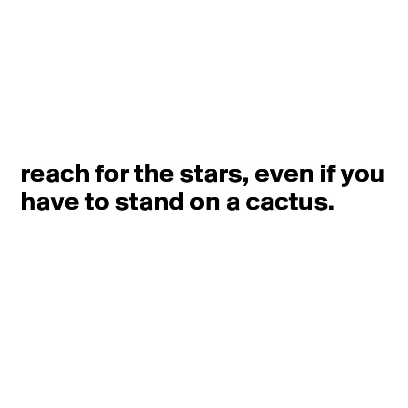 reach for the stars, even if you have to stand on a cactus.
