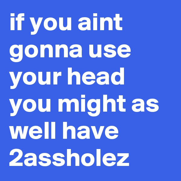 if you aint gonna use your head you might as well have 2assholez