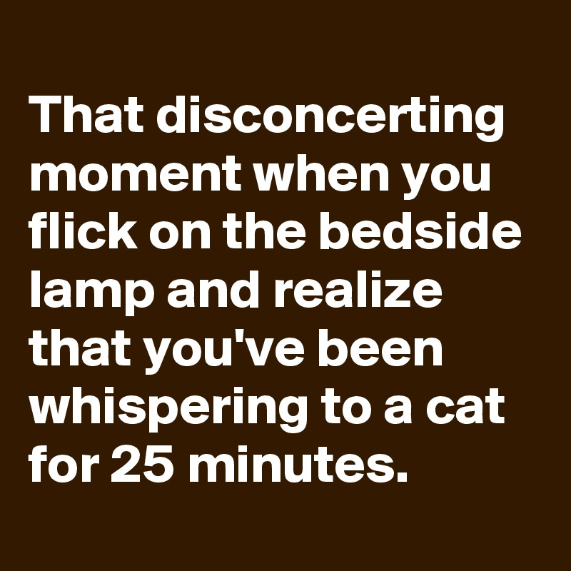 That disconcerting moment when you flick on the bedside lamp and realize that you've been whispering to a cat for 25 minutes.