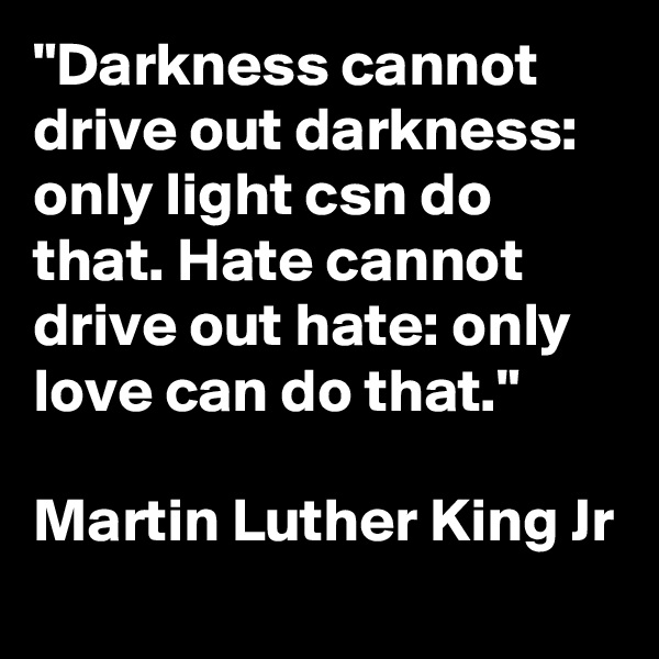 """""""Darkness cannot drive out darkness: only light csn do that. Hate cannot drive out hate: only love can do that.""""  Martin Luther King Jr"""