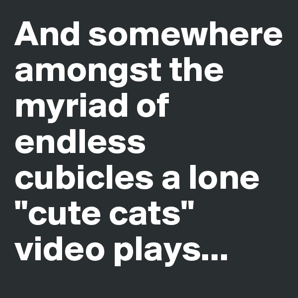 "And somewhere amongst the myriad of endless cubicles a lone ""cute cats"" video plays..."