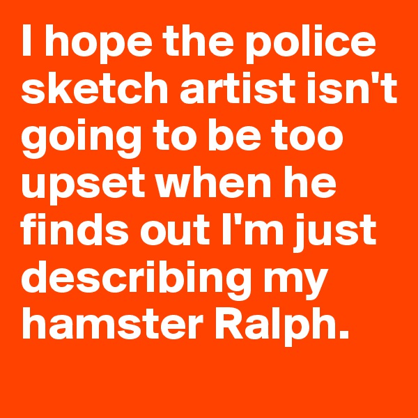 I hope the police sketch artist isn't going to be too upset when he finds out I'm just describing my hamster Ralph.