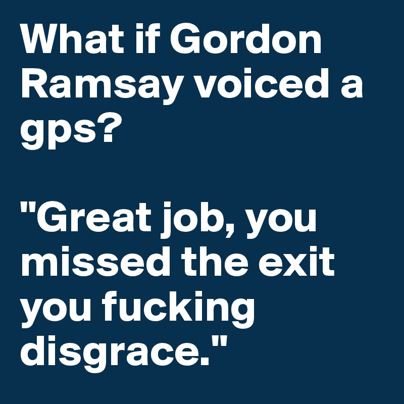 "What if Gordon Ramsay voiced a gps?   ""Great job, you missed the exit you fucking disgrace."""