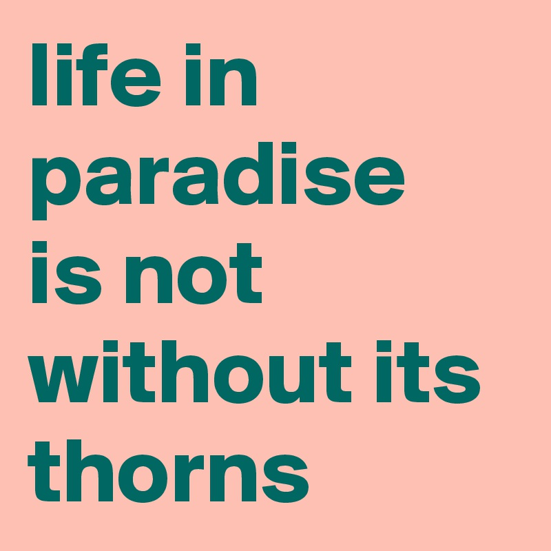 life in paradise  is not without its thorns