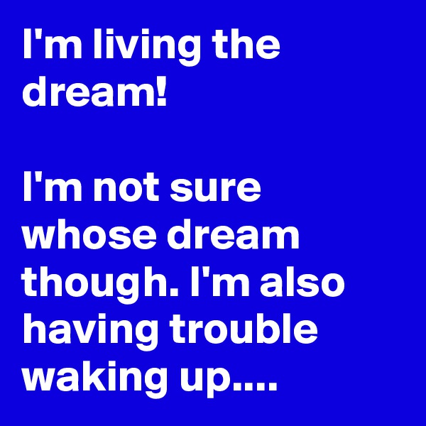 I'm living the dream!  I'm not sure whose dream though. I'm also having trouble waking up....