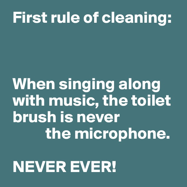 First rule of cleaning:     When singing along   with music, the toilet  brush is never            the microphone.   NEVER EVER!