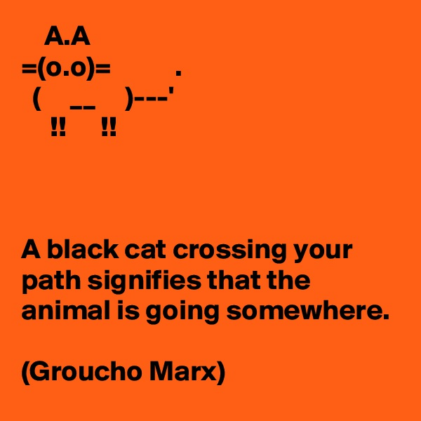 A.A =(o.o)=           .   (     __     )---'      !!      !!    A black cat crossing your path signifies that the animal is going somewhere.  (Groucho Marx)