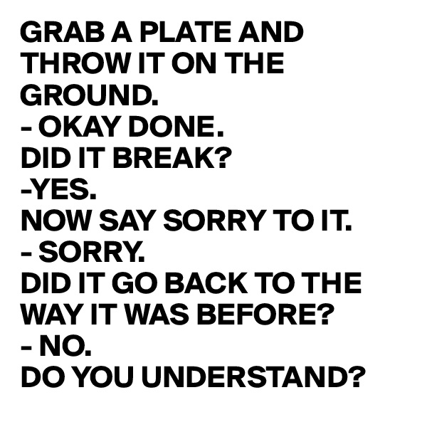 GRAB A PLATE AND THROW IT ON THE GROUND. - OKAY DONE. DID IT BREAK? -YES. NOW SAY SORRY TO IT. - SORRY. DID IT GO BACK TO THE WAY IT WAS BEFORE? - NO. DO YOU UNDERSTAND?