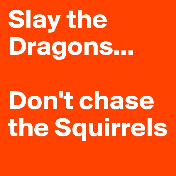 Slay the Dragons...   Don't chase the Squirrels
