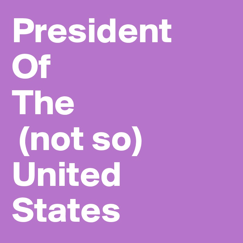 President  Of The  (not so) United  States
