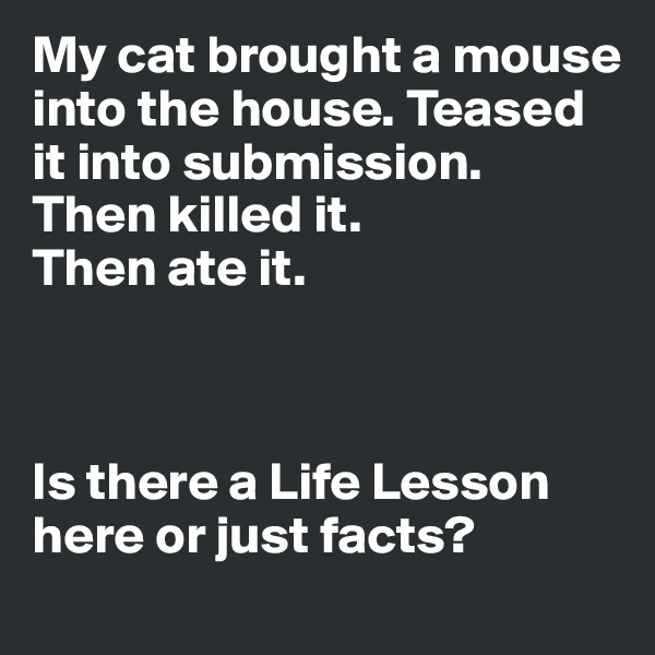 My cat brought a mouse into the house. Teased it into submission.  Then killed it. Then ate it.     Is there a Life Lesson here or just facts?