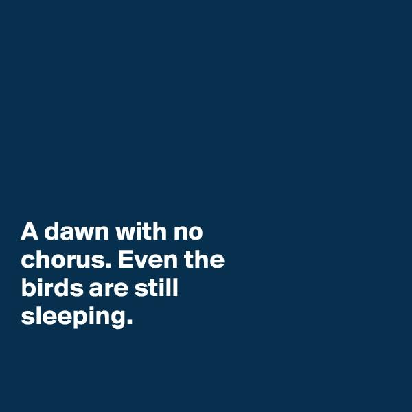 A dawn with no chorus. Even the birds are still  sleeping.