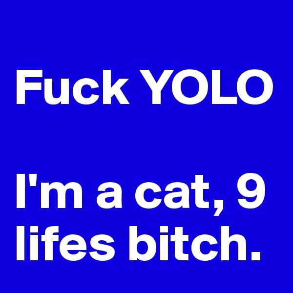 Fuck YOLO  I'm a cat, 9 lifes bitch.