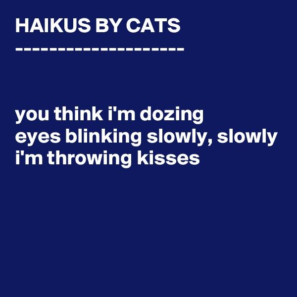 HAIKUS BY CATS --------------------   you think i'm dozing eyes blinking slowly, slowly i'm throwing kisses