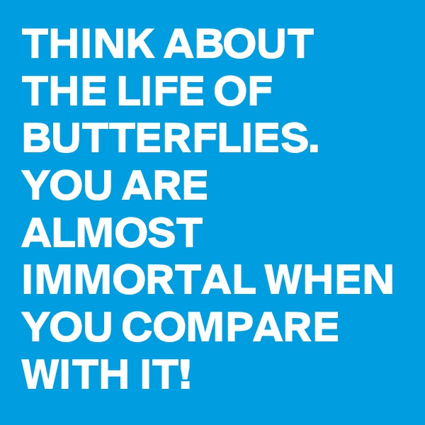 THINK ABOUT THE LIFE OF BUTTERFLIES. YOU ARE ALMOST IMMORTAL WHEN YOU COMPARE WITH IT!